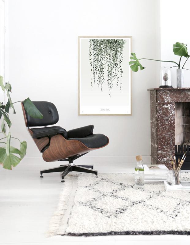 Wall Decor From Ross : Botanics art prints discount from ross brown